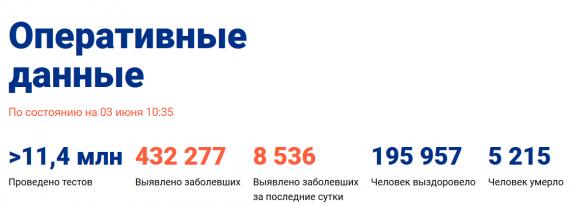 Число заболевших коронавирусом на 03 июня 2020 года в России