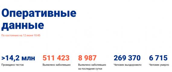 Число заболевших коронавирусом на 12 июня 2020 года в России
