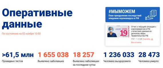 Число заболевших коронавирусом на 02 ноября 2020 года в России