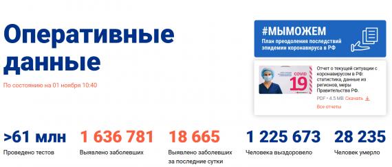 Число заболевших коронавирусом на 01 ноября 2020 года в России
