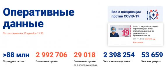 Число заболевших коронавирусом на 25 декабря 2020 года в России