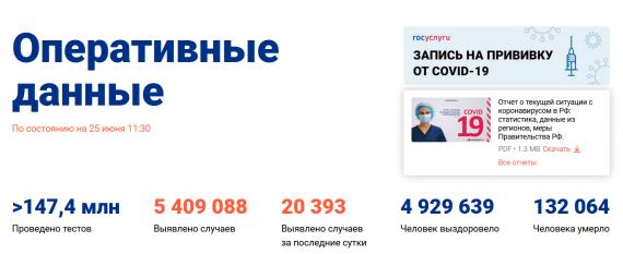 Число заболевших коронавирусом на 25 июня 2021 года в России