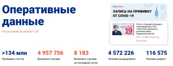 Число заболевших коронавирусом на 18 мая 2021 года в России