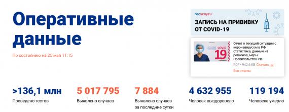 Число заболевших коронавирусом на 25 мая 2021 года в России