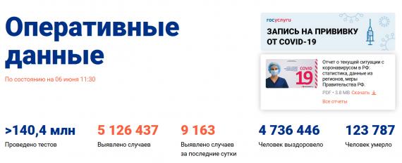 Число заболевших коронавирусом на 06 июня 2021 года в России