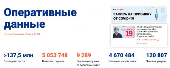 Число заболевших коронавирусом на 29 мая 2021 года в России