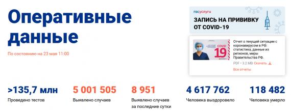 Число заболевших коронавирусом на 23 мая 2021 года в России