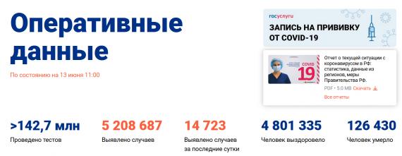 Число заболевших коронавирусом на 13 июня 2021 года в России