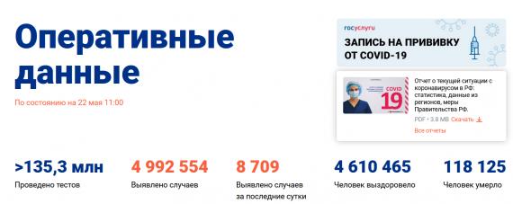 Число заболевших коронавирусом на 22 мая 2021 года в России