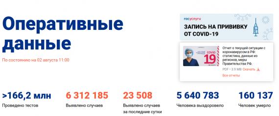 Число заболевших коронавирусом на 02 августа 2021 года в России