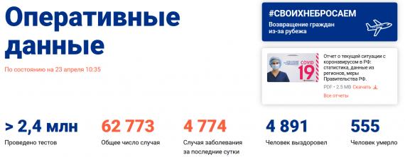Число заболевших коронавирусом на 23 апреля 2020 года в России