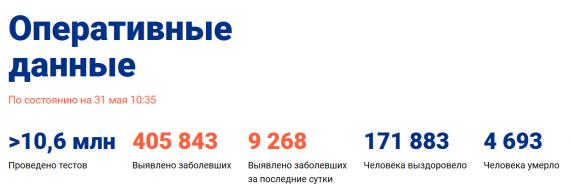 Число заболевших коронавирусом на 31 мая 2020 года в России