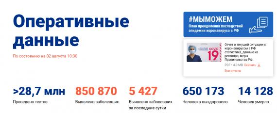 Число заболевших коронавирусом на 02 августа 2020 года в России