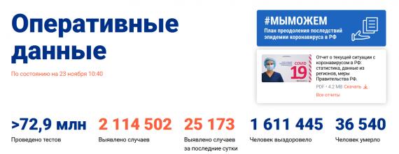 Число заболевших коронавирусом на 23 ноября 2020 года в России