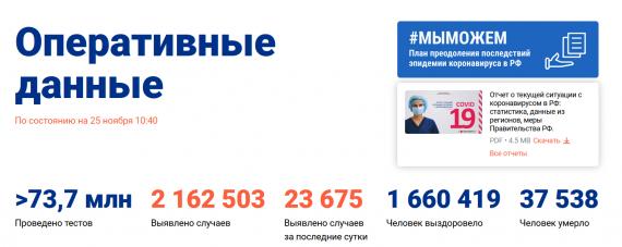 Число заболевших коронавирусом на 25 ноября 2020 года в России