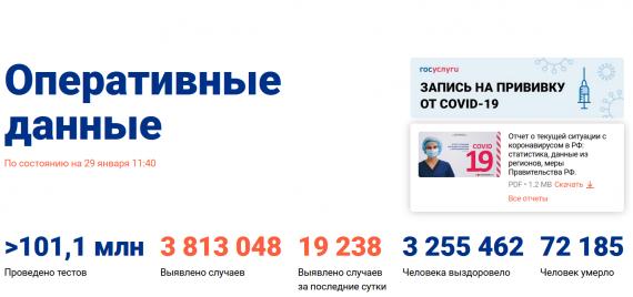 Число заболевших коронавирусом на 29 января 2021 года в России