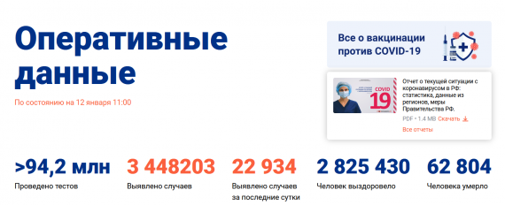 Число заболевших коронавирусом на 12 января 2021 года в России