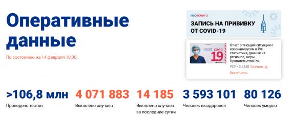 Число заболевших коронавирусом на 14 февраля 2021 года в России