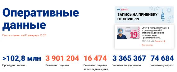 Число заболевших коронавирусом на 03 февраля 2021 года в России