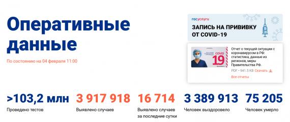 Число заболевших коронавирусом на 04 февраля 2021 года в России