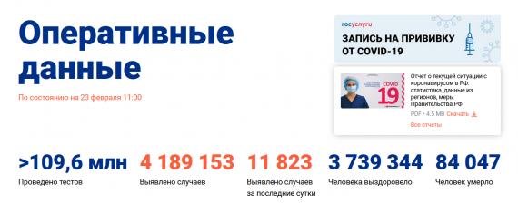 Число заболевших коронавирусом на 23 февраля 2021 года в России