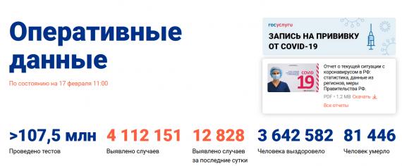 Число заболевших коронавирусом на 17 февраля 2021 года в России