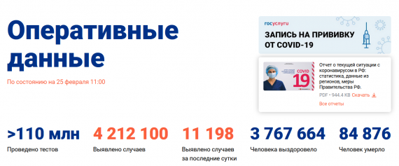 Число заболевших коронавирусом на 25 февраля 2021 года в России