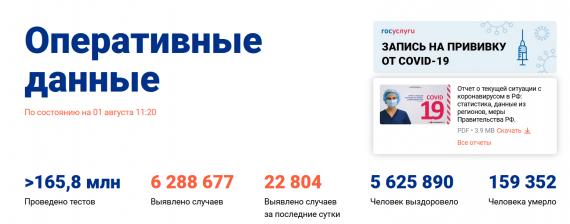 Число заболевших коронавирусом на 01 августа 2021 года в России